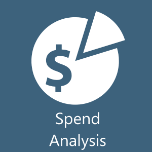 Spend Analysis and Assessment